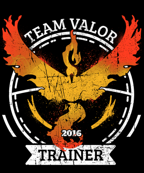 Qwertee: Team Valor