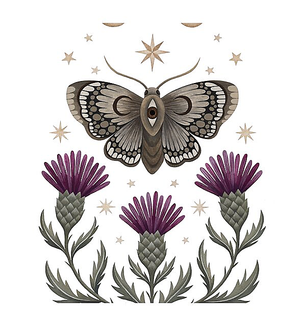 RedBubble: Thistle and moth