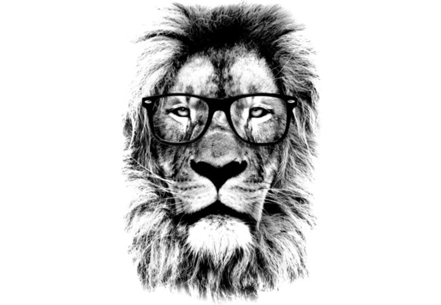 Design by Humans: The king lion of the library