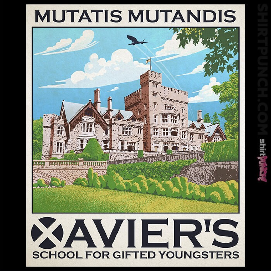 ShirtPunch: Xavier's School For Gifted Youngsters