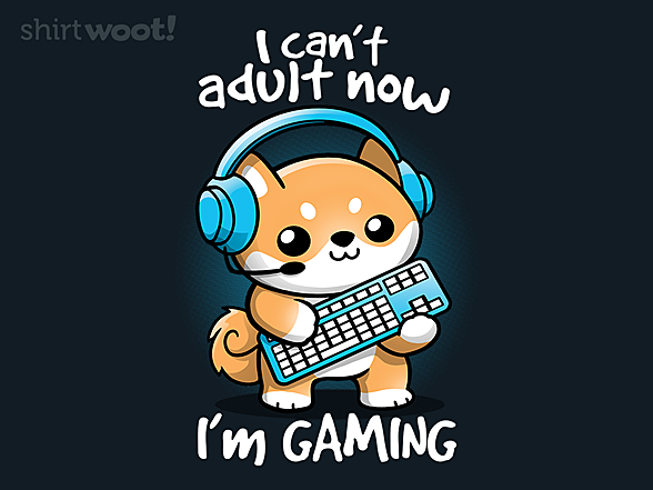 Woot!: Gamer Can't Adult