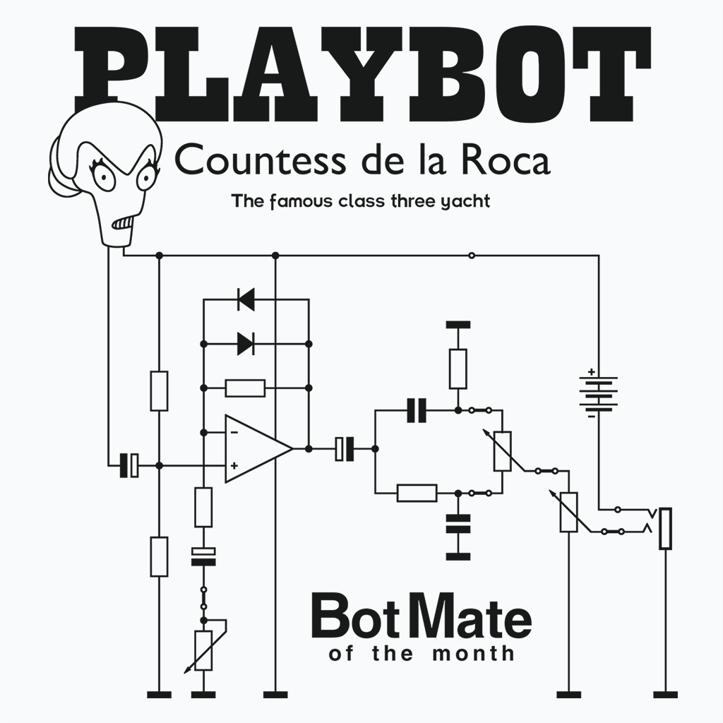 Pop-Up Tee: Botmate of the Month