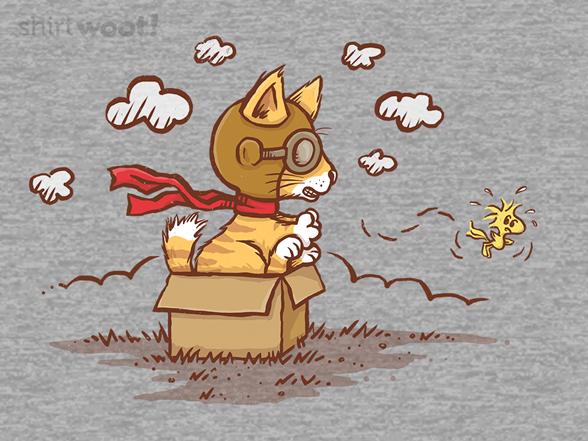 Woot!: Cardboard Box Flying Ace
