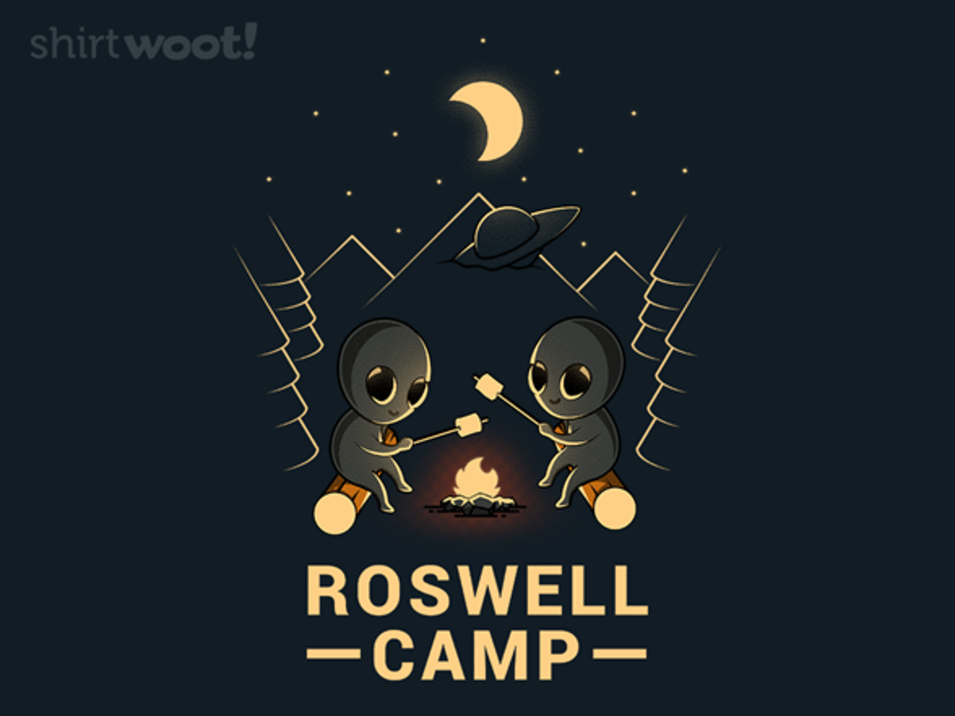 Woot!: Roswell Camp