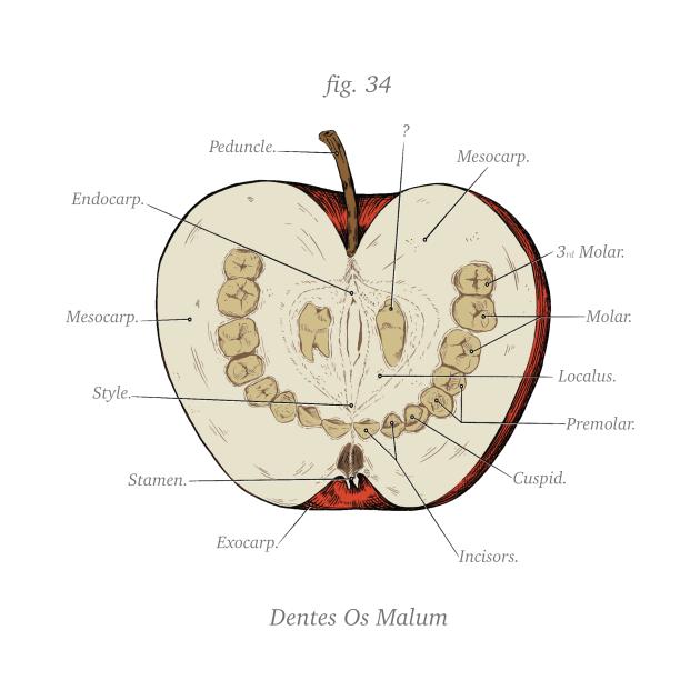 TeePublic: The Magnus Archives - Anatomy Class - Teeth Apple