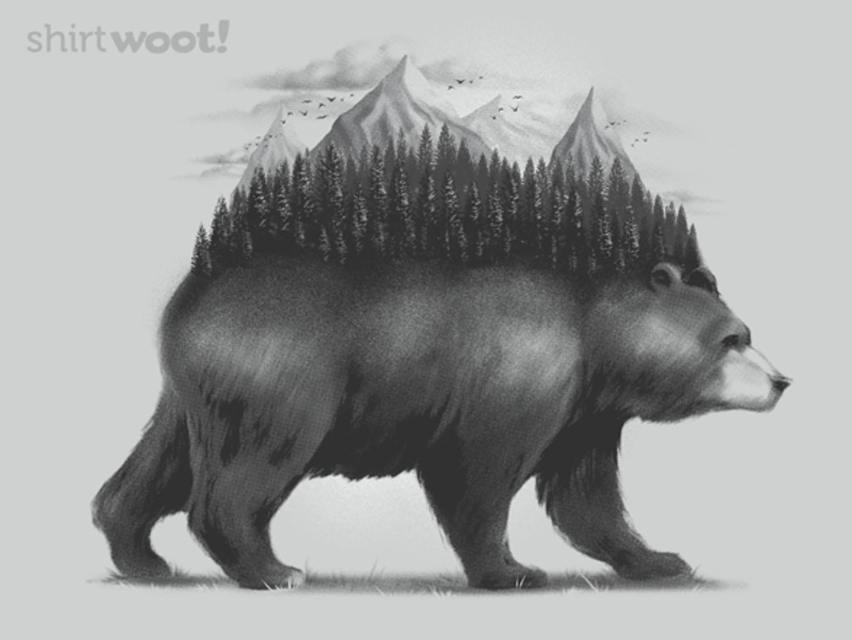 Woot!: Bear Forest