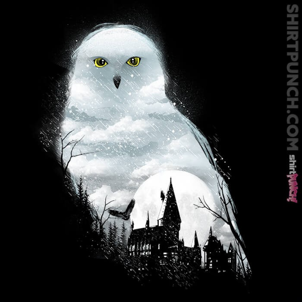 ShirtPunch: Magical Owl