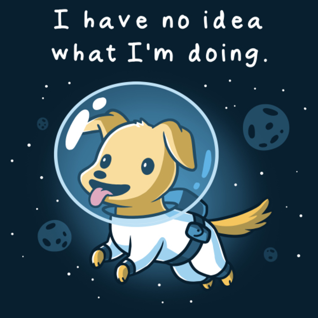 TeeTurtle: I Have No Idea What I'm Doing (In Space)