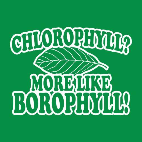 Five Finger Tees: Chlorophyll? More Like Borophyll T-Shirt