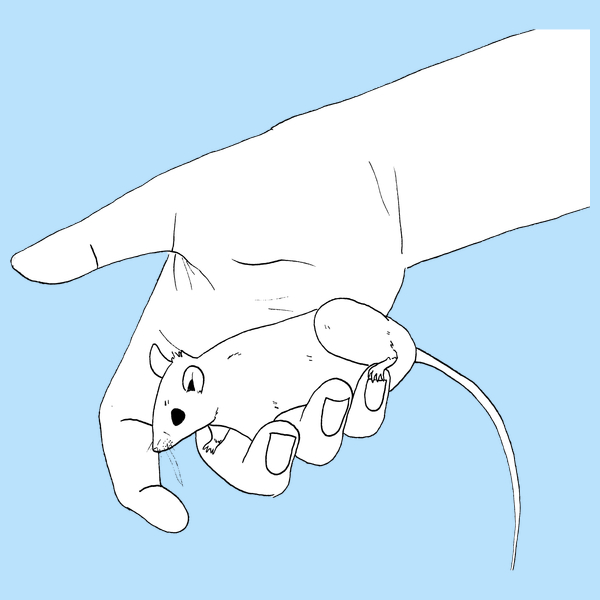 NeatoShop: Old Mouse