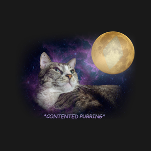 TeePublic: Lunar Qats