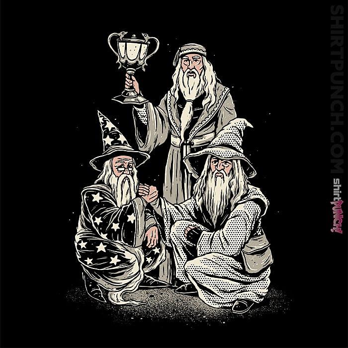 ShirtPunch: Triwizard Tournament Champs
