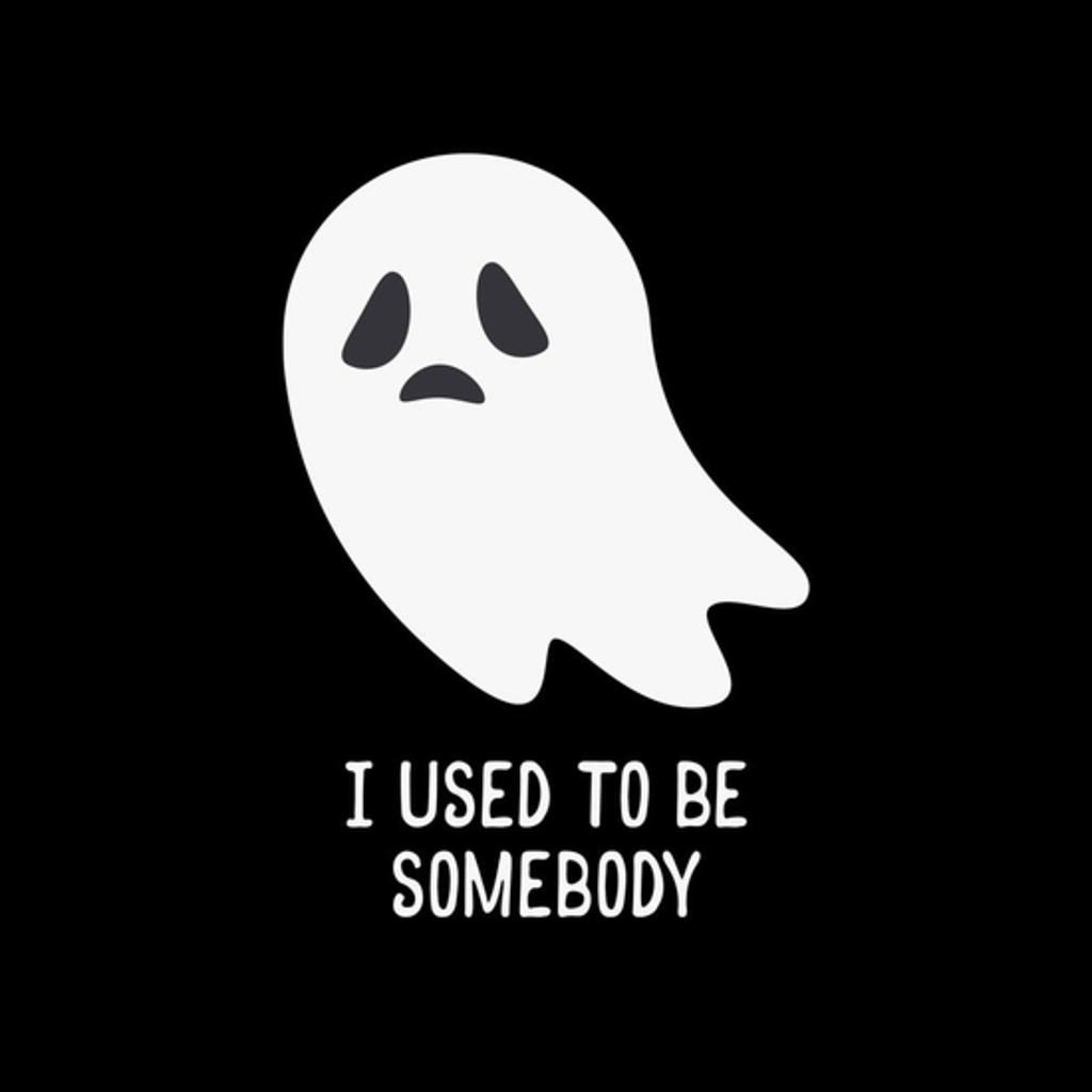 BustedTees: I Used To Be Somebody