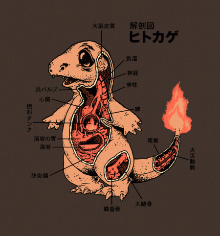 BustedTees: Charmander Anatomy