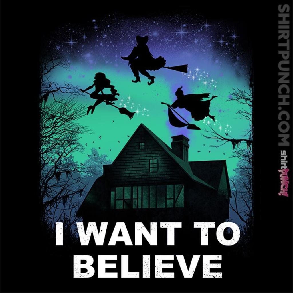 ShirtPunch: Believe In Magic