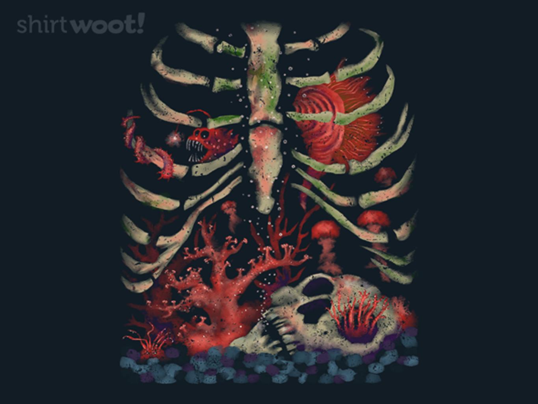 Woot!: Aquarium Inside
