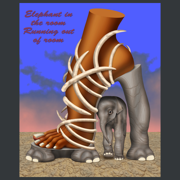 NeatoShop: Elephant In The Room Running Out of Room