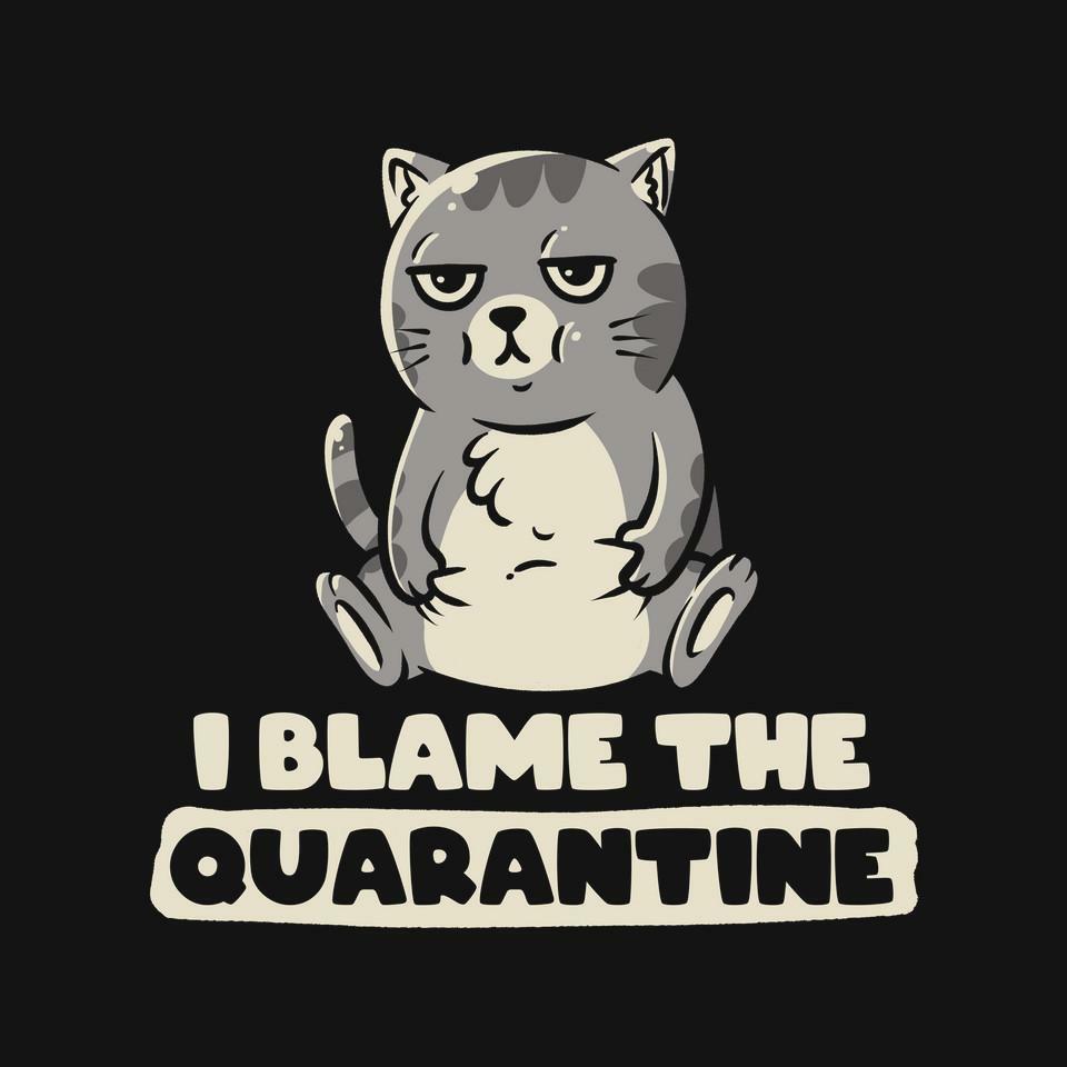 TeeFury: I Blame the Quarantine