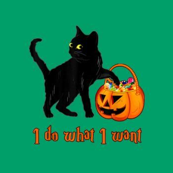 BustedTees: Cat I Do What I Want Halloween Candy Pumpkin Bag B Kids Shirt