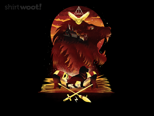 Woot!: Book of Lions