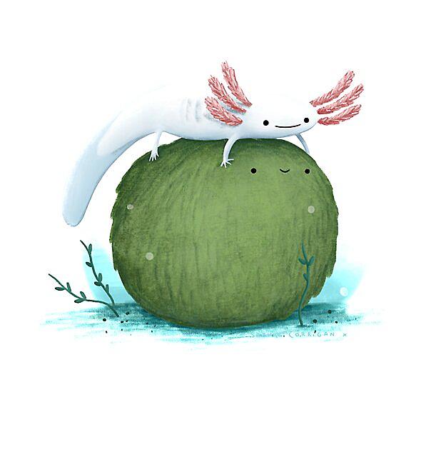 RedBubble: Axolotl on a Mossball