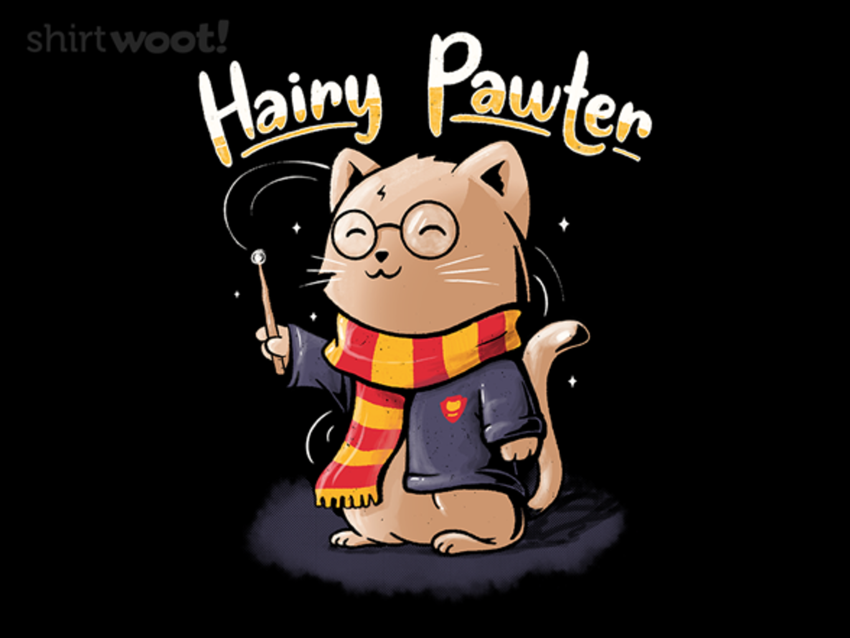 Woot!: Hairy Pawter