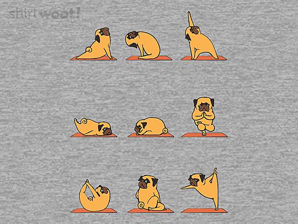 Woot!: Pug Yoga Remix