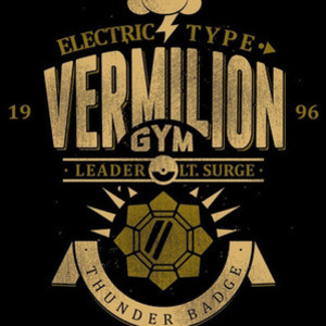 Once Upon a Tee: Vermillion City Gym