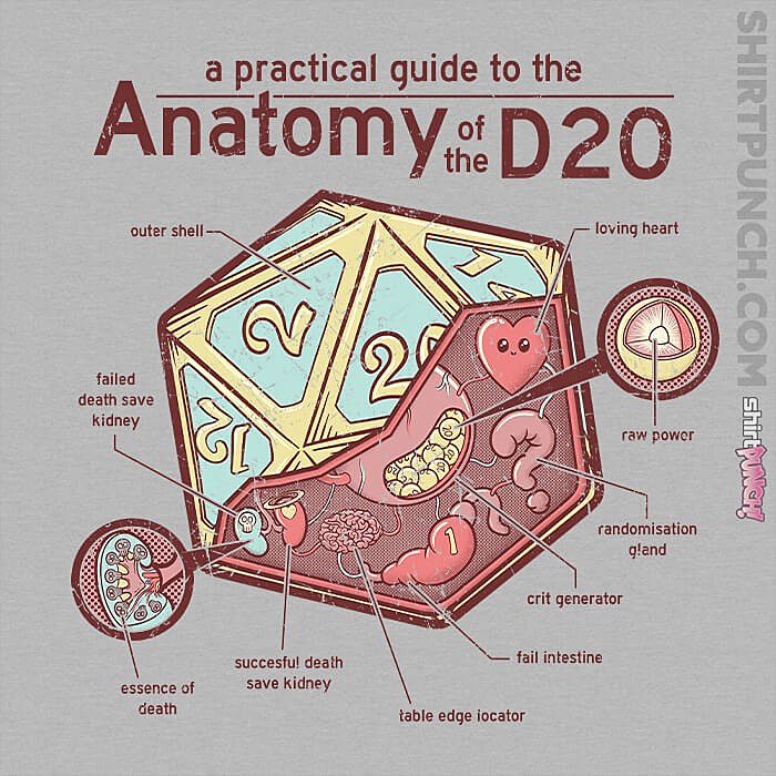 ShirtPunch: Anatomy Of The D20