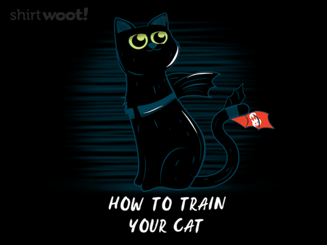 Woot!: How to Train Your Cat