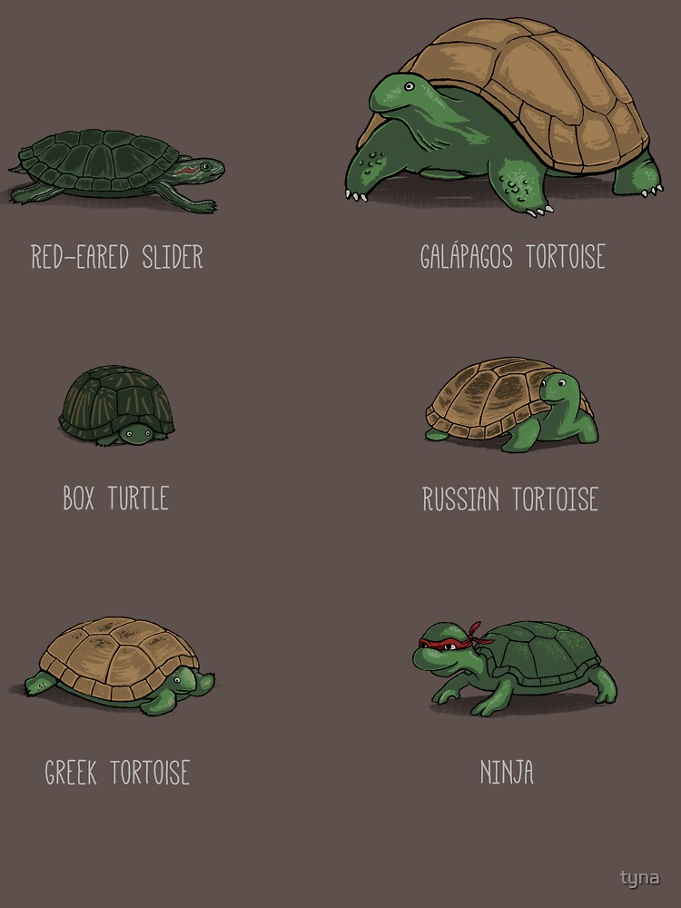 RedBubble: Know Your Turtles