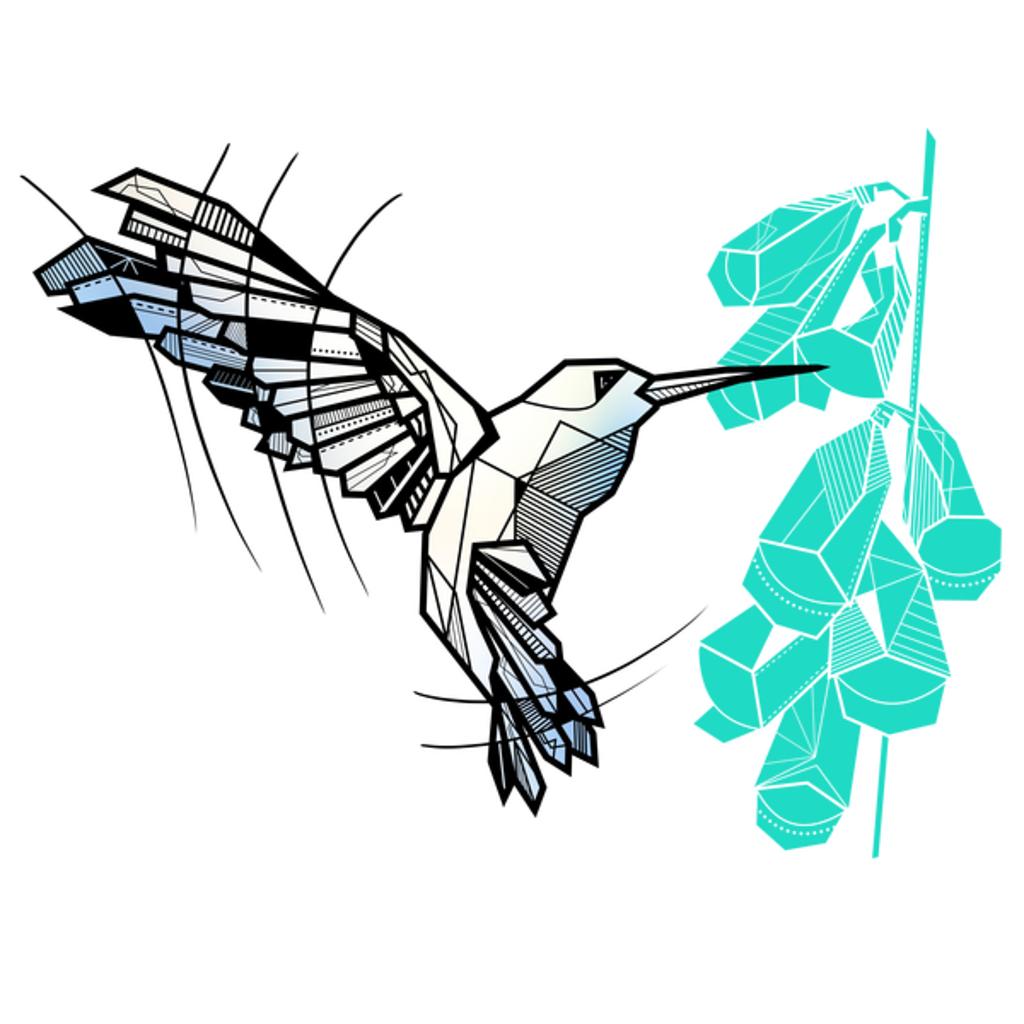 NeatoShop: Hummingbird geometric