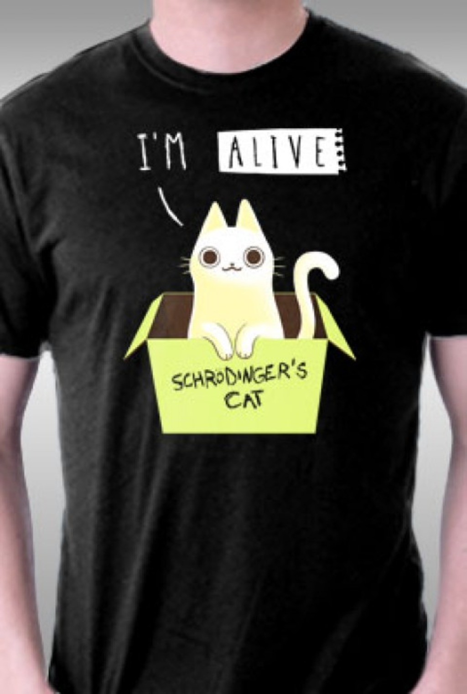 TeeFury: Schrödinger's Radiant Cat