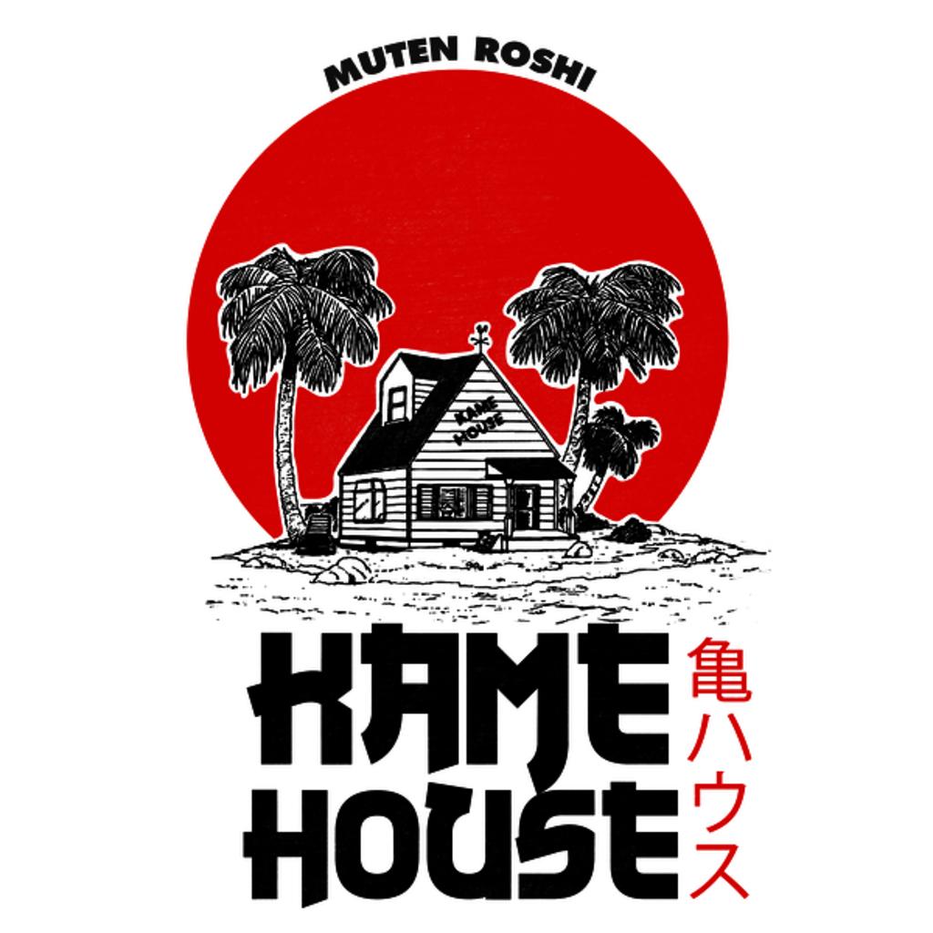 NeatoShop: Kame House