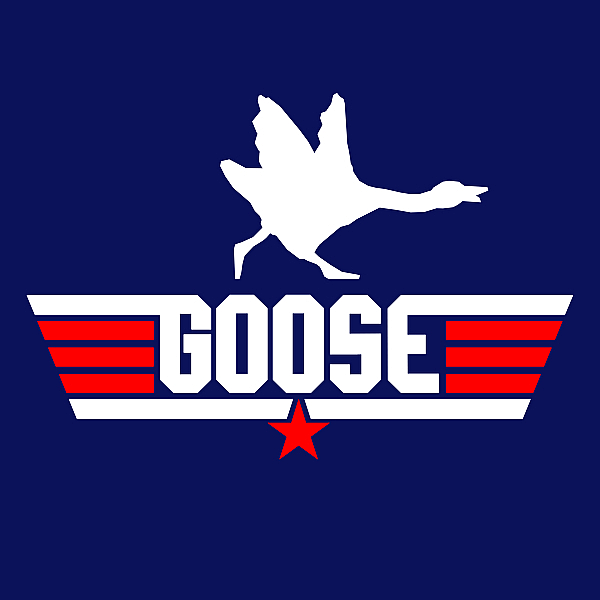 NeatoShop: Top Goose v2