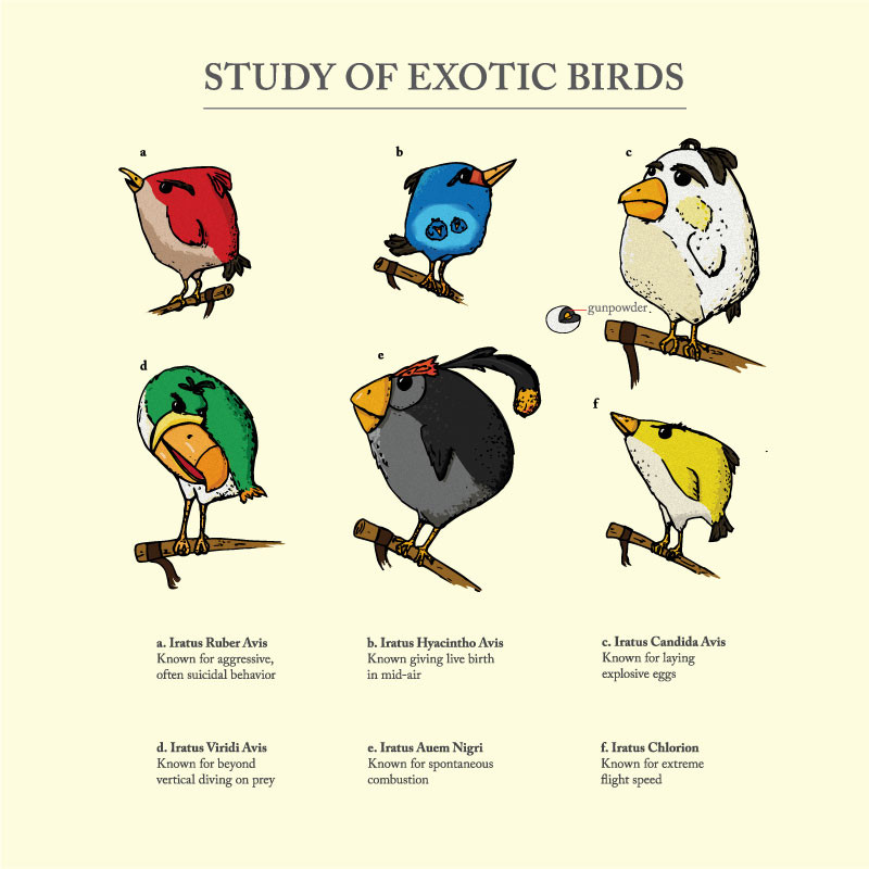 Wear Viral: Study of Exotic Birds