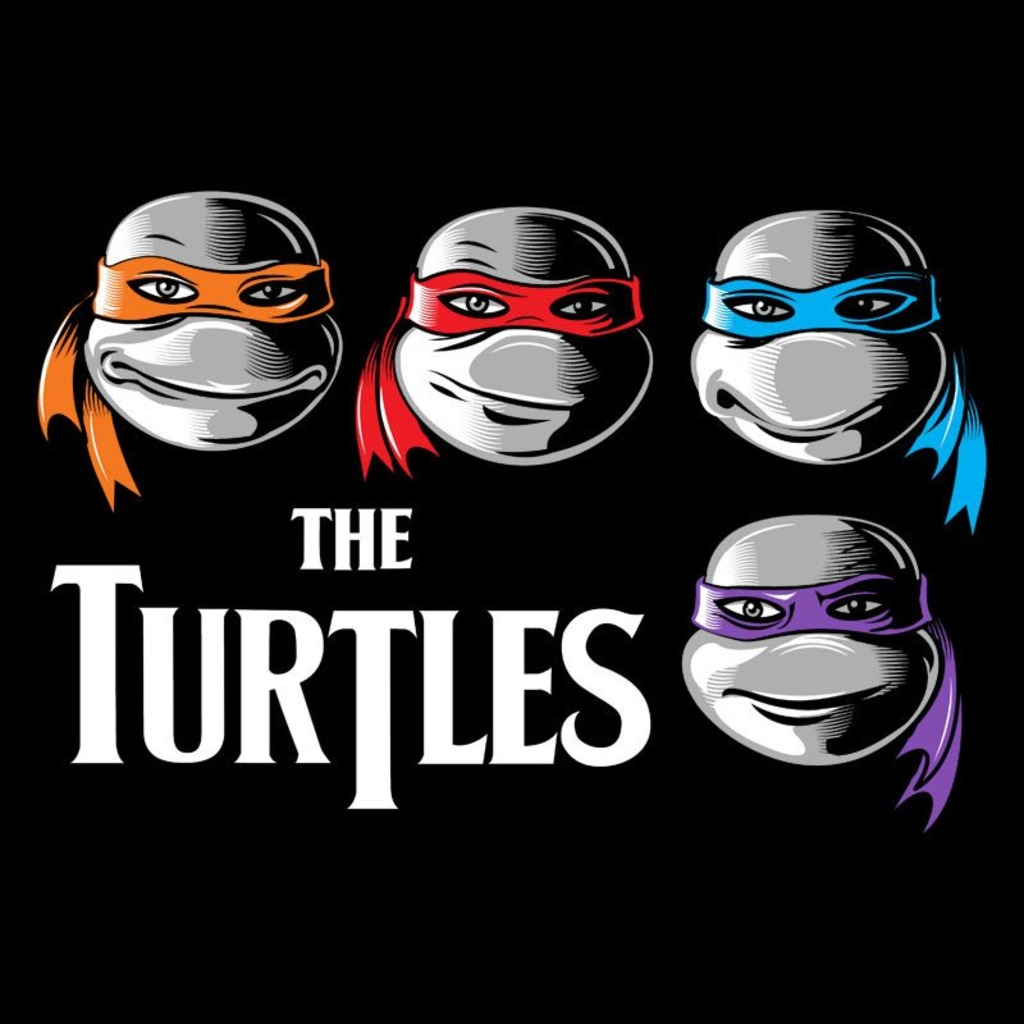 Snappy Kid: The Turtles