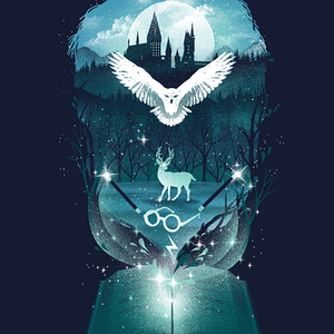 Qwertee: Book of Magic and Fantasy