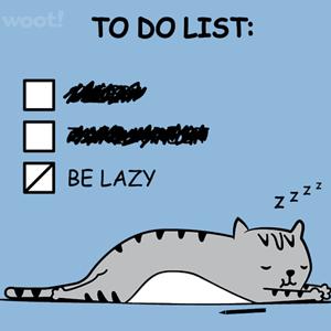 Woot!: New Year, New Laziness
