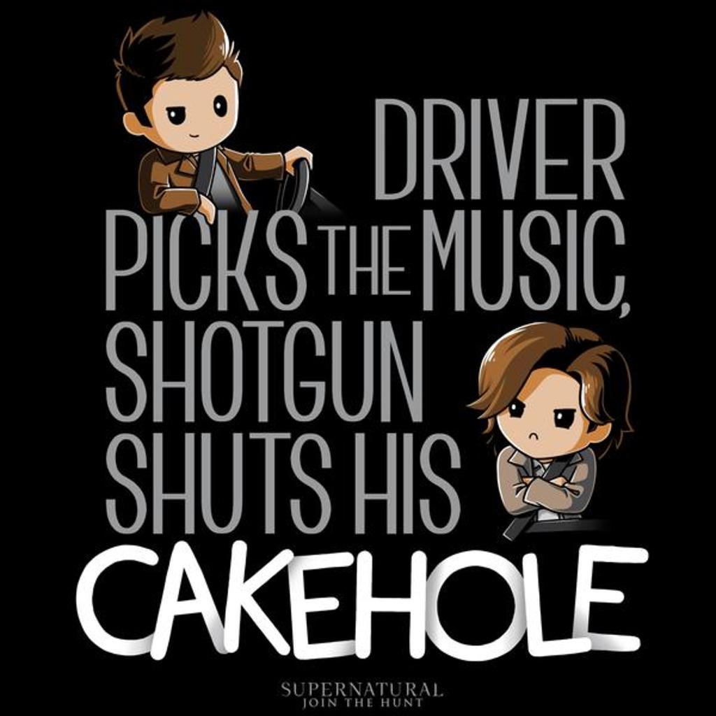 TeeTurtle: Driver Picks The Music