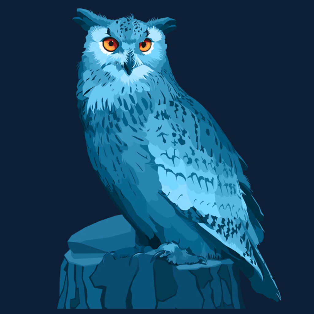 NeatoShop: Night Owl