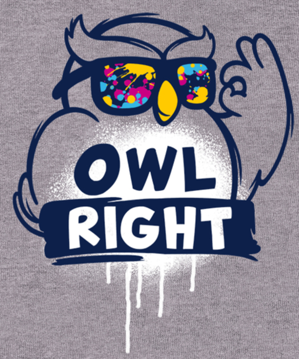 Qwertee: Owl right