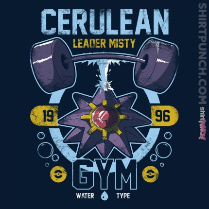 ShirtPunch: Cerulean Gym