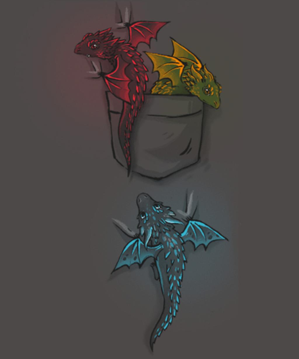 Qwertee: Pocket of Dragons
