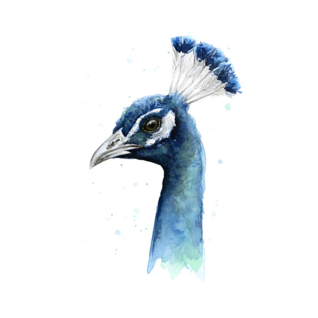 TeePublic: Peacock Watercolor