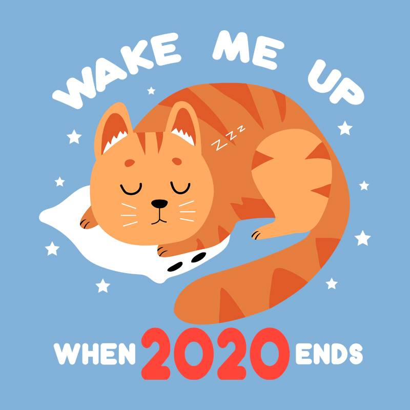 Pampling: When 2020 Ends