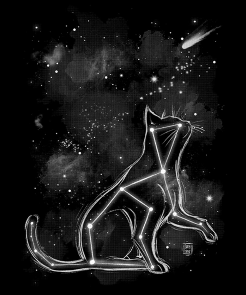 Qwertee: Starry cat