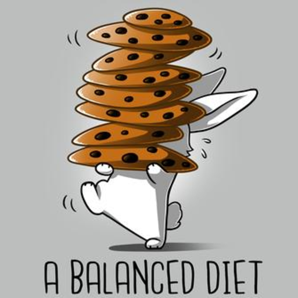 TeeTurtle: A Balanced Diet