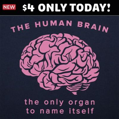 6 Dollar Shirts: The Human Brain