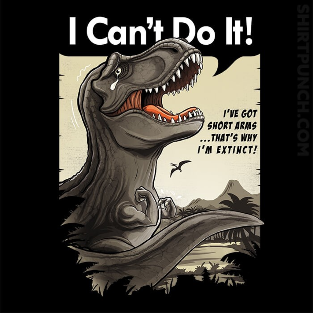 ShirtPunch: I Can't Do It